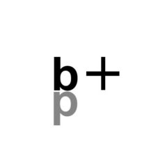 bim + partners